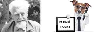 Konrad Lorenz, il padre dell'etologia e i suoi cani