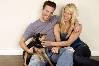 Cani gelosi: perché e come risolvere il problema.