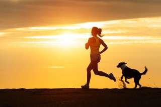 Correre col cane