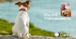 Mainardi: il cane secondo me