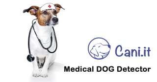 Cani medical detector