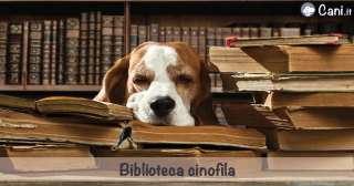 Biblioteca cinofila