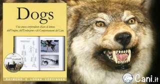 Dogs, dei coniugi Ray e Lorna Coppinger