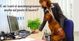Cani sul posto di lavoro