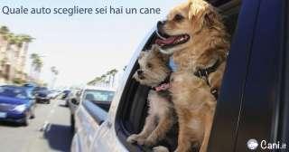 Quale auto scegliere sei hai un cane - top 10