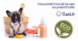 Come prenderti cura del tuo cane con prodotti EcoBio
