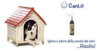 Igienizza e controlla gli odori della cuccia del tuo cane con uno spray