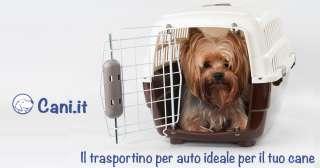 Il trasportino per auto ideale per il tuo cane