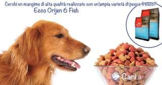 Orijen 6 Fish per cani un ottimo alimento a base di pesce