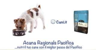 Acana Regionals Pacifica, nutri il tuo cane con il miglior pesce del Pacifico
