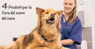 4 prodotti per la cura del cuore del cane