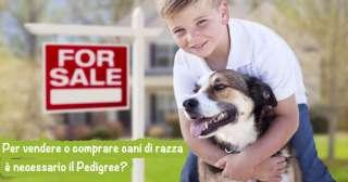 Per vendere o comprare cani di razza è necessario il Pedigree?