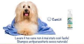Shampoo antiparassitario secco naturale!