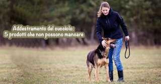 Addestramento del cucciolo: 5 prodotti che non possono mancare