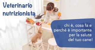 Veterinario nutrizionista: chi è, cosa fa e perché è importante per la salute del tuo cane!