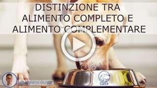 Differenza tra alimento completo e alimento complementare