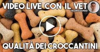 Qualità dei croccantini - Video con il Vet