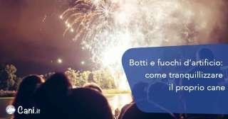 Botti e fuochi d'artificio: come tranquillizzare il proprio cane