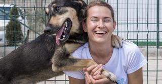 I benefici dell'adozione di un cane adulto