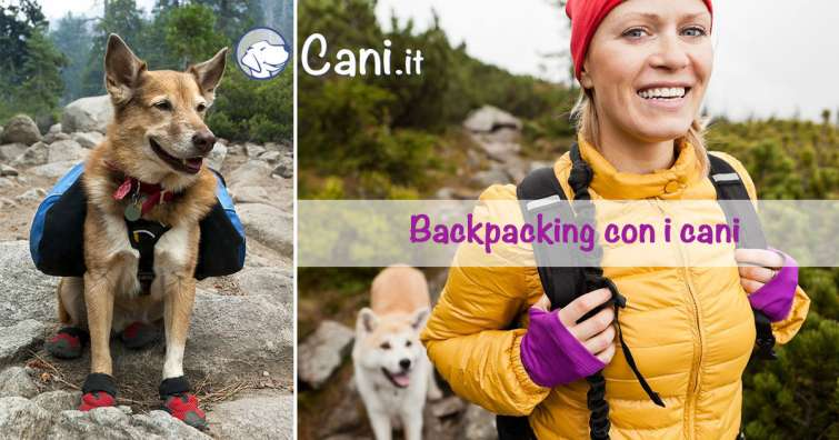 Backpacking con i cani