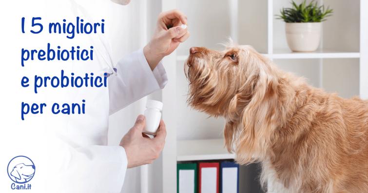 ripulire rapidamente i due punti probiotici per cani in farmacia