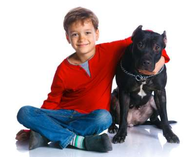 Bambino con pit bull