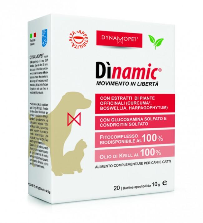 Dinamic Large