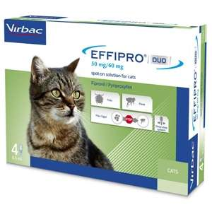 Effipro Duo Gatto - 4 Pipette