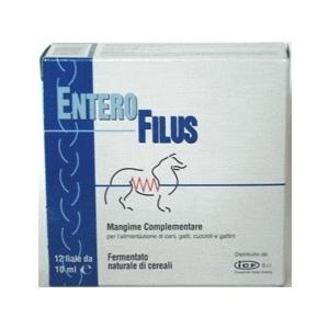 Enterofilus