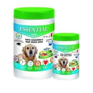 Essential Cane Senior