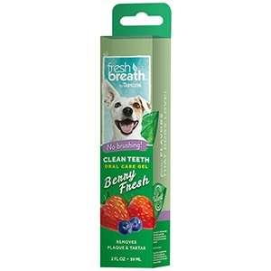 Fresh Breath Clean Teeth Oral Care Gel Berry Fresh