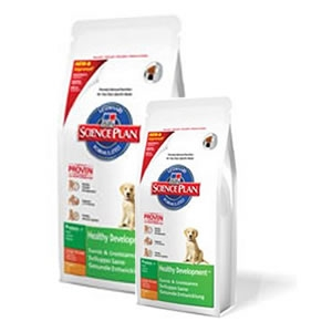 Science Plan Puppy Healthy Development Large Breed con Pollo