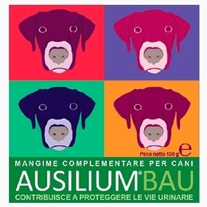 Ausilium BAU