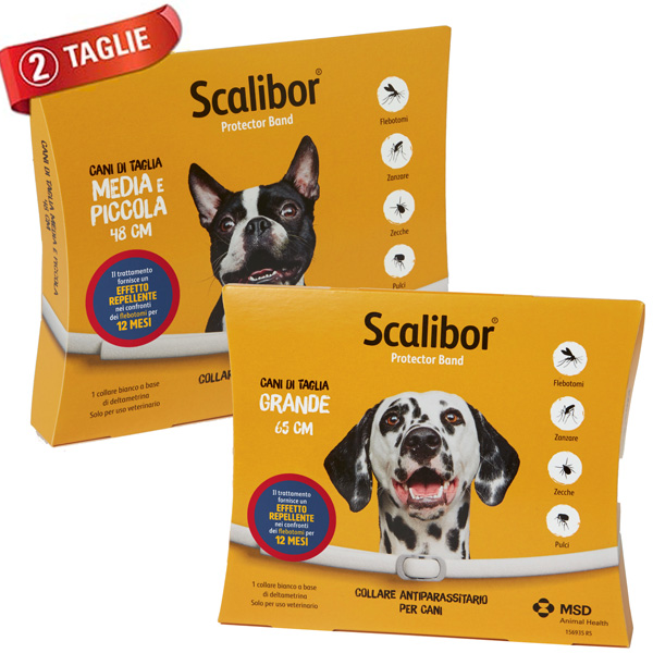Scalibor Collare ProtectorBand MSD
