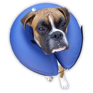 Procollar Collare Gonfiabile Blu