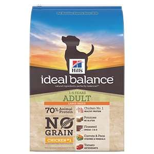 Ideal Balance Canine Adult Large No Grain Pollo e Patate