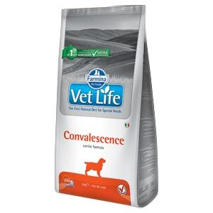 Vet Life Convalescence