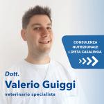 Consulenza + Dieta Casalinga