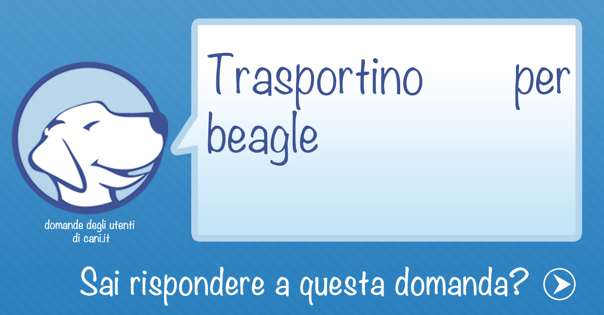 Trasportino per Beagle