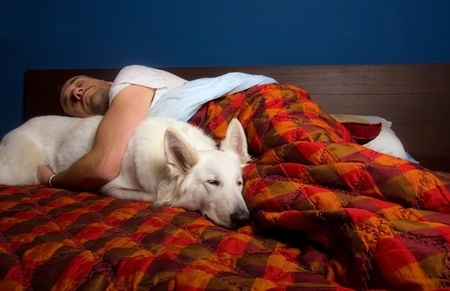 Il cane ti ama quando fa il pisolino sul nostro letto