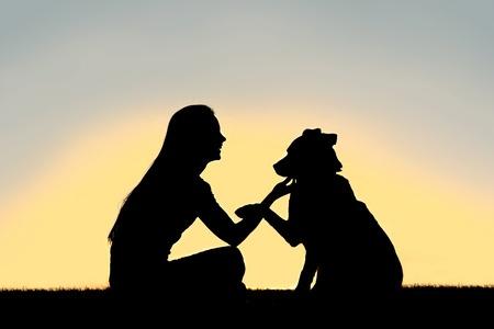 addestramento cane