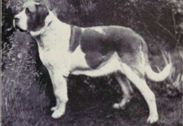 San Bernardo nel 1915