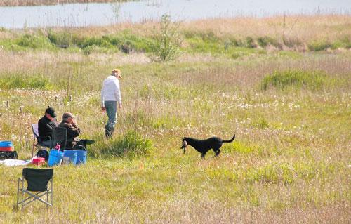 Field Trials - Prove sul campo
