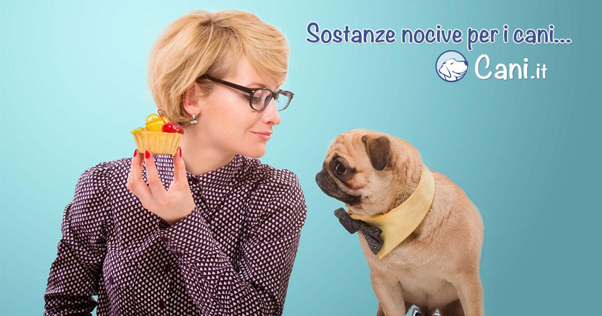 Sostanze nocivi per cani