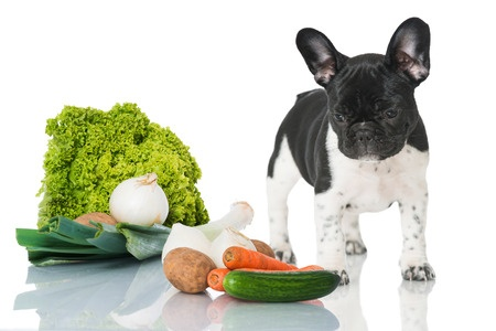 Alimentazione: verdura per il cane