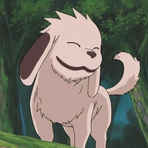 Akamaru cane di Naruto
