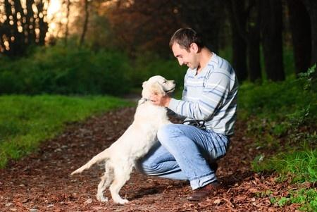i cani percepiscono quando noi li trascuriamo
