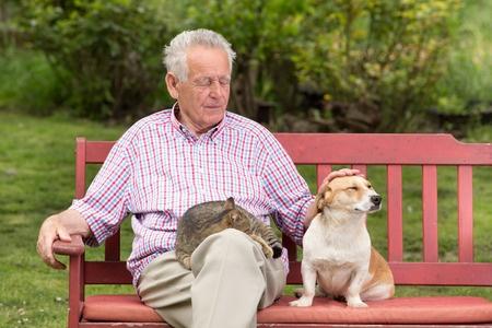 Possedere un cane riduce il rischio di malattie cardiovascolari