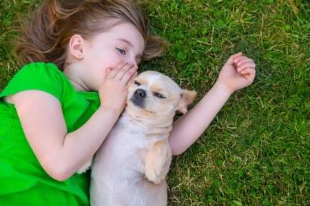 cane con i bambini
