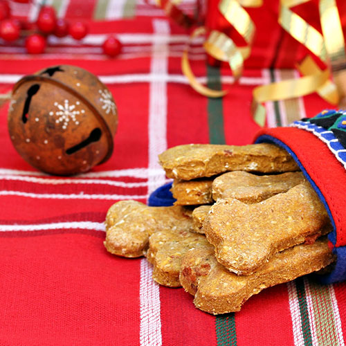 i cani apprezzano tutto ciò che gli regali